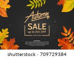 autumn leaves on a dark wet... | Shutterstock .eps vector #709729384