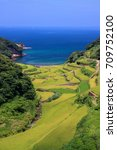 Small photo of Hamanoura Tanada, terraced rice field in Karatsu, Saga, Japan.