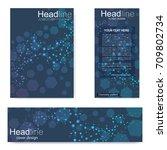 set flyer  brochure size a4... | Shutterstock .eps vector #709802734