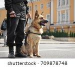 smart police dog sitting... | Shutterstock . vector #709878748