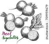 beet vegetable set. detailed... | Shutterstock .eps vector #709959679