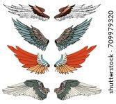 hand drawn wing vector set... | Shutterstock .eps vector #709979320