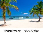 palm and tropical beach | Shutterstock . vector #709979500