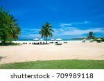 palm and tropical beach | Shutterstock . vector #709989118