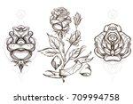 Botanical Graphics. Roses. A...