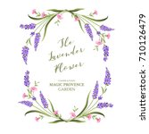 elegant card with lavender... | Shutterstock .eps vector #710126479