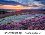 Small photo of Sunset over Cheviot Hills and Rothbury Heather / Rothbury Terraces walk offers views over the Coquet Valley to the Simonside and Cheviot Hills, heather covers the hillside in summer