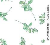 seamless watercolor... | Shutterstock . vector #710163088