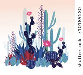 beautiful  cactus collection.... | Shutterstock .eps vector #710189530