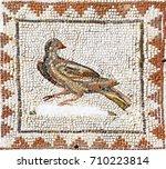 ancient roman mosaic... | Shutterstock . vector #710223814