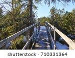 bozi dar peat bog trail at the... | Shutterstock . vector #710331364