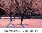 winter landscape with hoarfrost ...   Shutterstock . vector #710340814