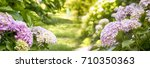 spring garden with flowers | Shutterstock . vector #710350363