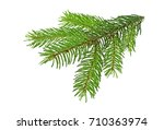 pine branch isolated on a white ... | Shutterstock . vector #710363974