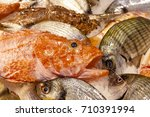 miscellaneous fish on ice.... | Shutterstock . vector #710391994