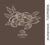 background with almond  almond... | Shutterstock .eps vector #710396836