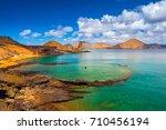 galapagos islands. ecuador.... | Shutterstock . vector #710456194