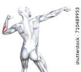 conceptual 3d illustration back ... | Shutterstock . vector #710489953