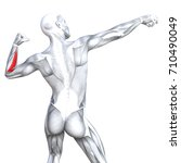 conceptual 3d illustration back ... | Shutterstock . vector #710490049