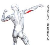 conceptual 3d illustration... | Shutterstock . vector #710490103