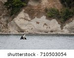 A Whale Watching Excursion In...