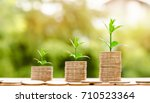 step of coins stacks with tree...   Shutterstock . vector #710523364