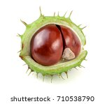 Chestnut In The Skin Isolated...