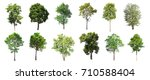 collection of isolated trees on ... | Shutterstock . vector #710588404