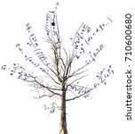 tree with mathematical... | Shutterstock . vector #710600680