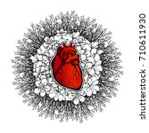 human heart on a floral...   Shutterstock .eps vector #710611930