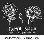 set of doodle sketch flower...   Shutterstock .eps vector #710650549