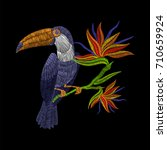 embroidery toucan with tropical ... | Shutterstock .eps vector #710659924