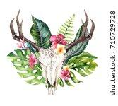watercolor bohemian cow skull... | Shutterstock . vector #710729728