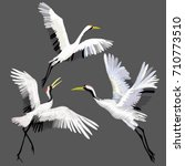 the crane embroidery   vector ... | Shutterstock .eps vector #710773510