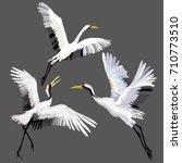 the crane embroidery   vector ... | Shutterstock .eps vector #710773510