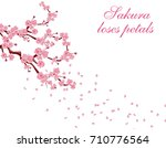 branches with pink flowers and... | Shutterstock . vector #710776564