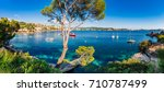 idyllic island scenery ... | Shutterstock . vector #710787499