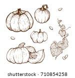 pumpkin vector drawing set.... | Shutterstock .eps vector #710854258