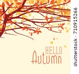 autumn landscape with fall... | Shutterstock .eps vector #710915266