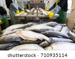 industrial fish factory with... | Shutterstock . vector #710935114