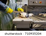 industrial fish factory with... | Shutterstock . vector #710935204