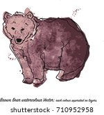 brown bear vector watercolor 6... | Shutterstock .eps vector #710952958