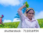 haputale  sri lanka   september ... | Shutterstock . vector #711016954