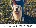 Stock photo cropped image of handsome man with his dog golden retriever outdoors labrador sitting near his 711018883