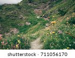 a group of hikers is walking on ... | Shutterstock . vector #711056170