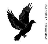 flying dove on white background ... | Shutterstock .eps vector #711080140