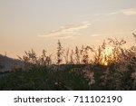early morning sky with... | Shutterstock . vector #711102190