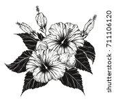hibiscus flower vector by hand... | Shutterstock .eps vector #711106120