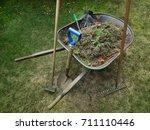 wheelbarrow filled with weeds... | Shutterstock . vector #711110446