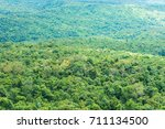 beautiful green forest at view... | Shutterstock . vector #711134500
